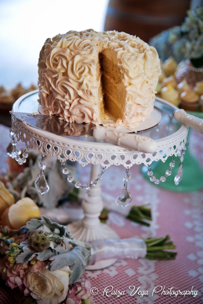 Meriwether Springs Wedding -10